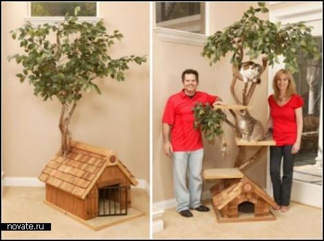 Домики для кошек фото из дерева